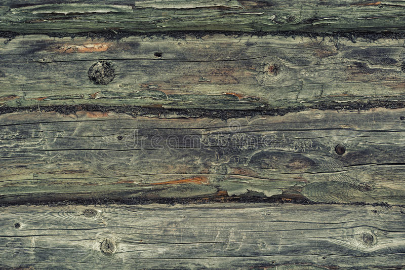 Old oak texture royalty free stock photography