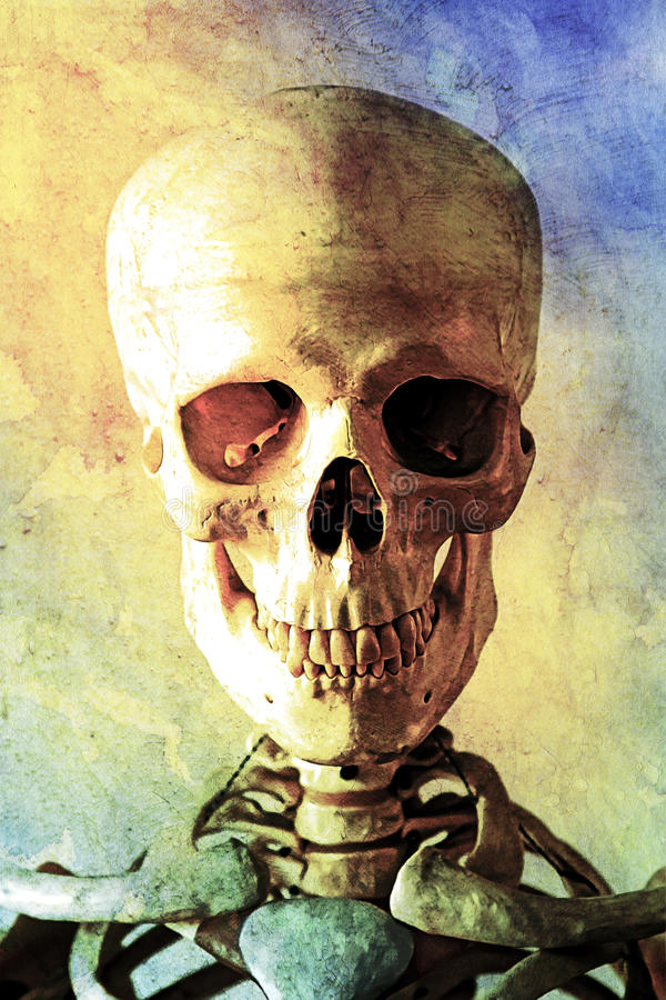 Old Oil Painting of a Human Skull stock photography