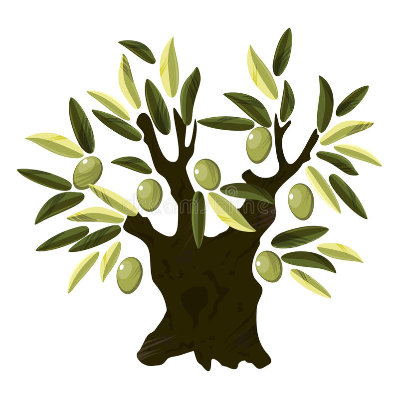 Download Old olive tree stock vector. Image of illustration, botany - 27595968