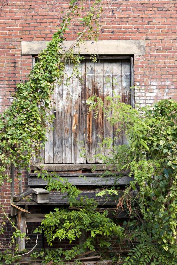 Old overgrown loading dock