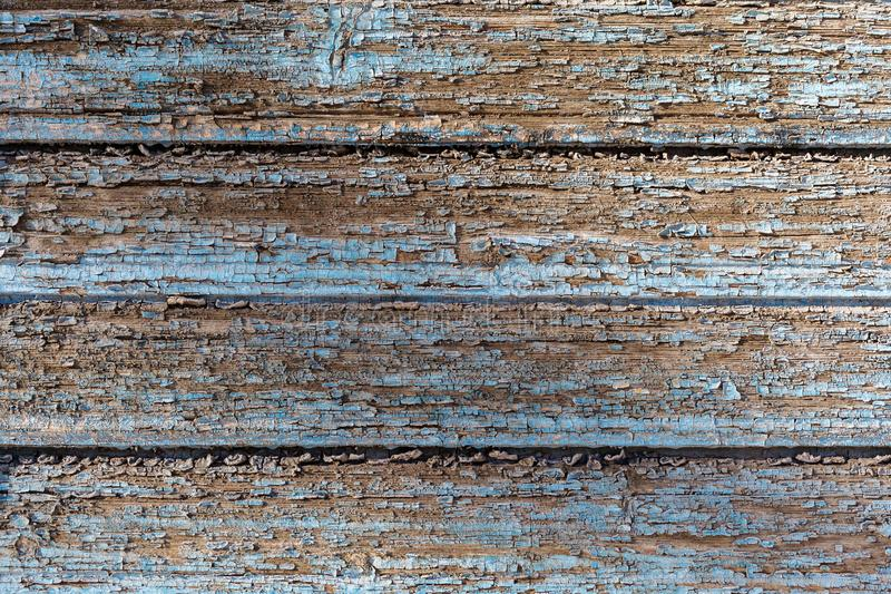 Old painted blue board with peeled off paint. Texture of wood structure. Close-up stock images