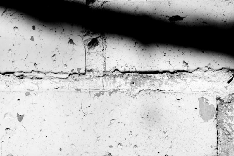 Old painted brick wall with shadows of branches on it. Black and white abstract background. Old painted brick wall with shadows of branches on it on a sunny day stock photo