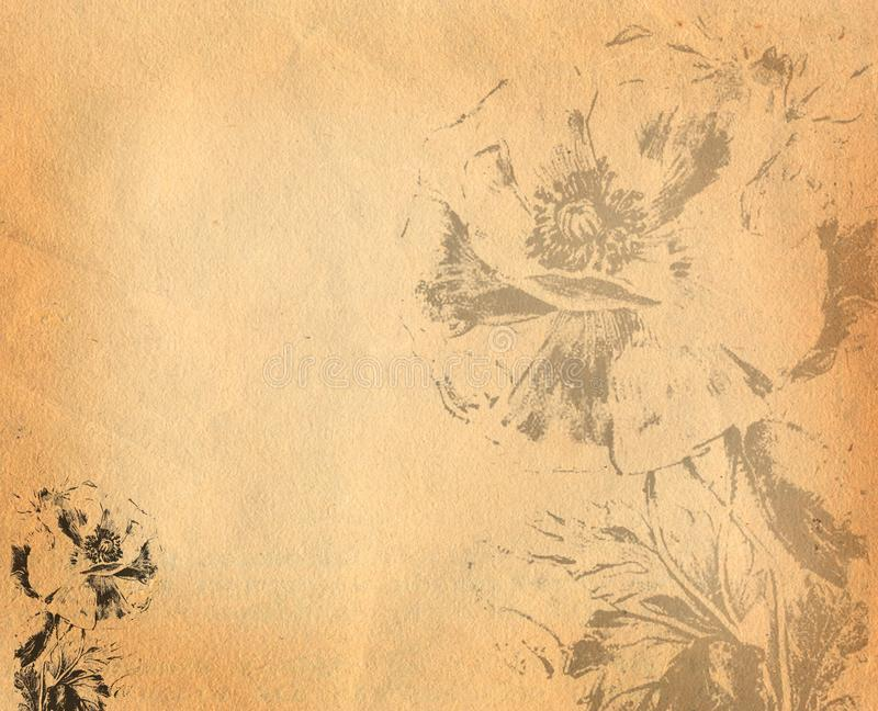 Old paper background with flowers vector illustration