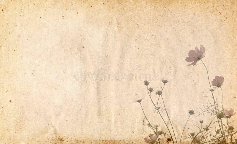 Old paper flower background frame vector illustration