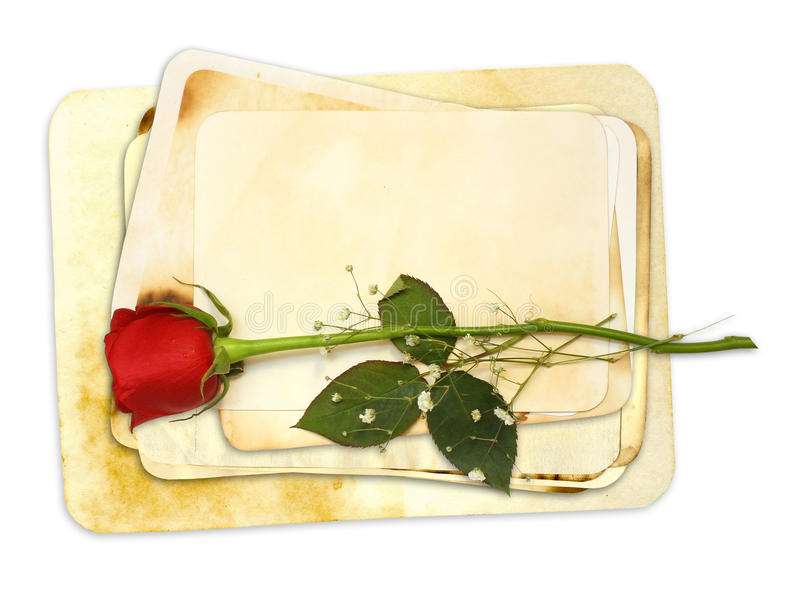 Download Old Paper Stack With Red Rose Stock Illustration - Image: 13280097