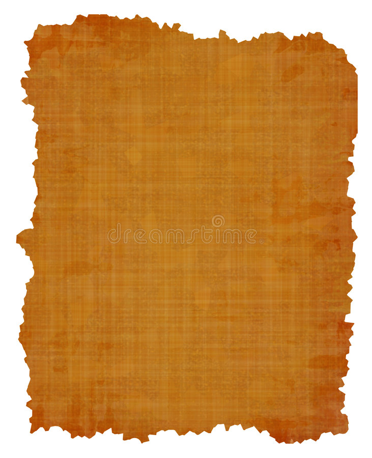 Old papyrus texture vector illustration