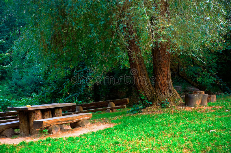 Old Park Stock Photo