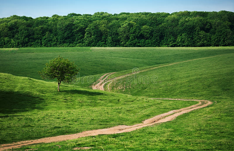 And old path wandering between green fields. And bosky hills royalty free stock photos