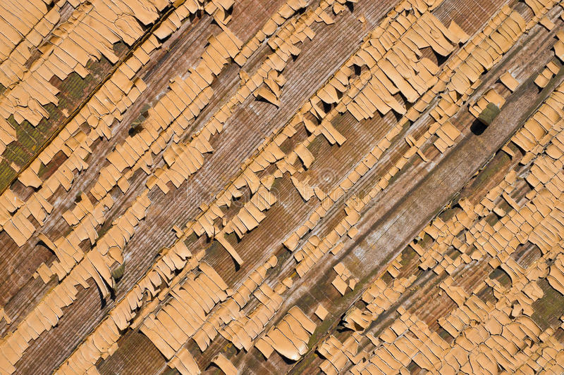 Download Old peeling paint. stock image. Image of peeling, planks - 20042959