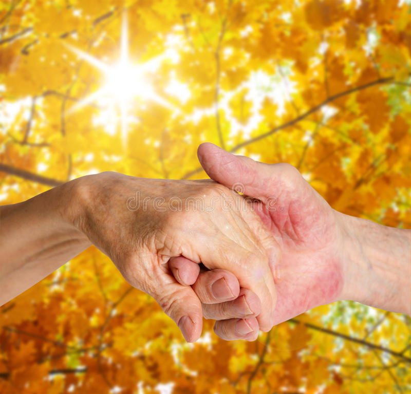 Old people holding hands. Closeup. Old people holding hands closeup. Background on sunny autumn landscape royalty free stock image