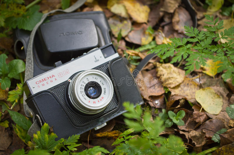 Old photo camera in the autumn forest. stock photos