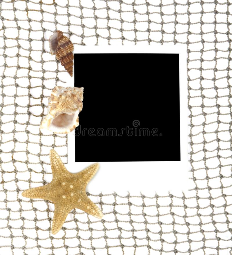 Download An Old Photo A Cockleshells Stock Image - Image of fishing, design: 21001377