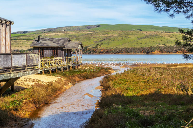 Old Pier House in Northern California. Old Pier House in the small town of Inverness on Tomales Bay in Northern California royalty free stock images