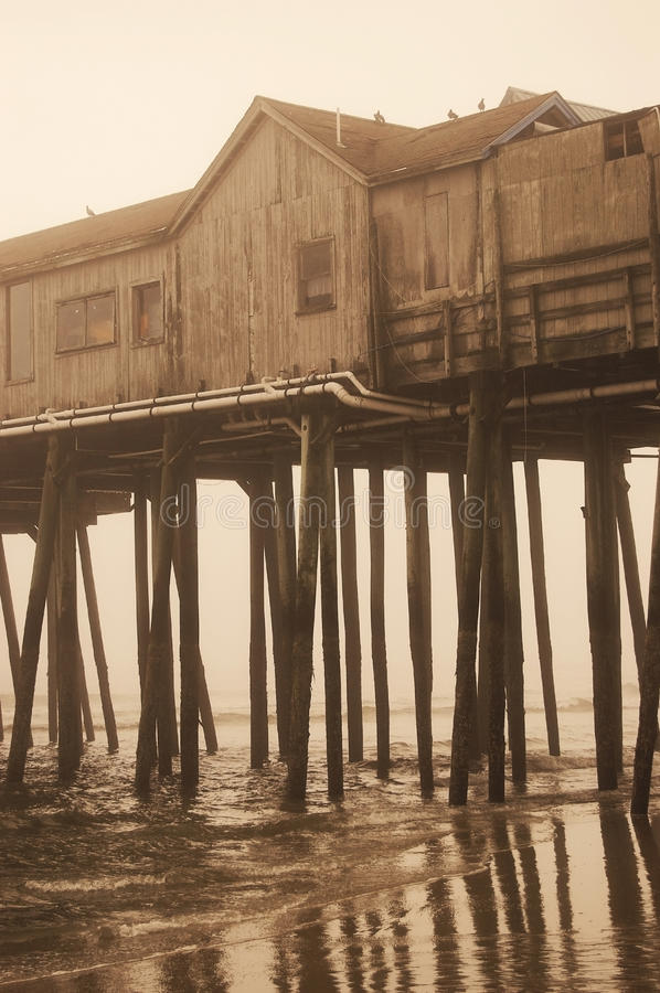 Old Pier in Sepia royalty free stock images
