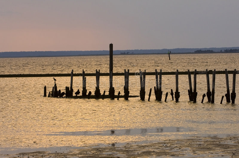 Download Old Pier On The Shore Of The Gulf Of Mexico Stock Image - Image: 1327369