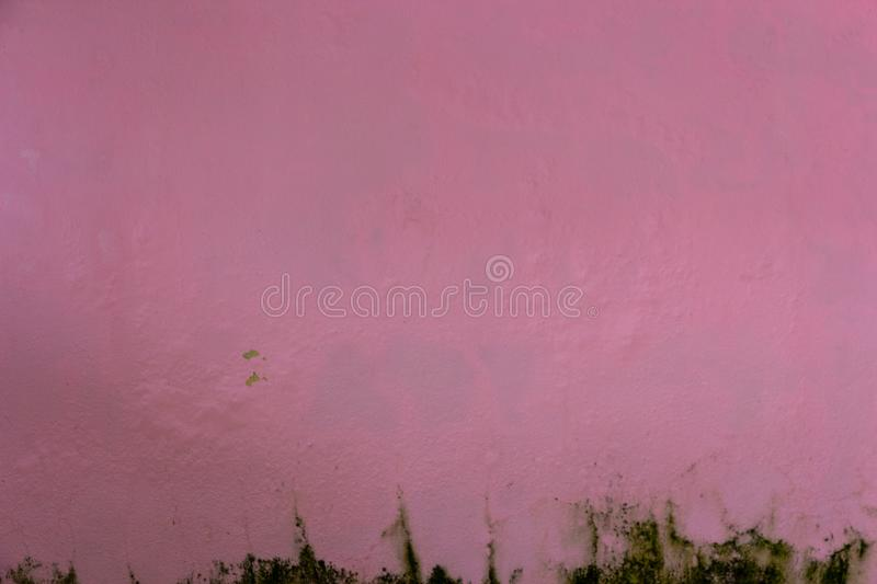 Old pink messy wall with dirty stucco texture for background, De stock photo