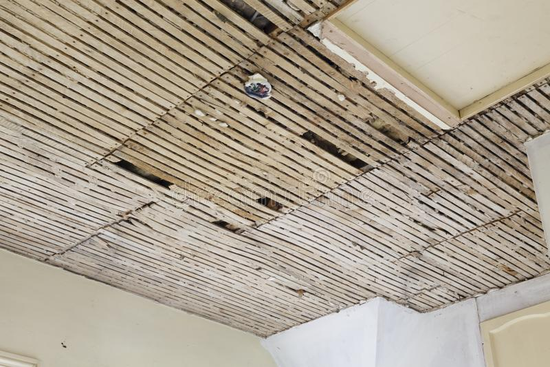 Old plaster and lath ceiling. In a house stock images