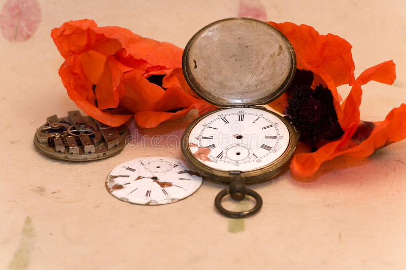 Download Old pocket watch and poppy stock photo. Image of pink - 25634038