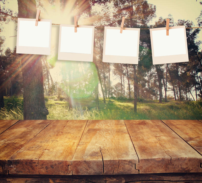 Old polaroid photo frames hanging on a rope with vintage wooden board table in front of abstract forest landscape.  stock image
