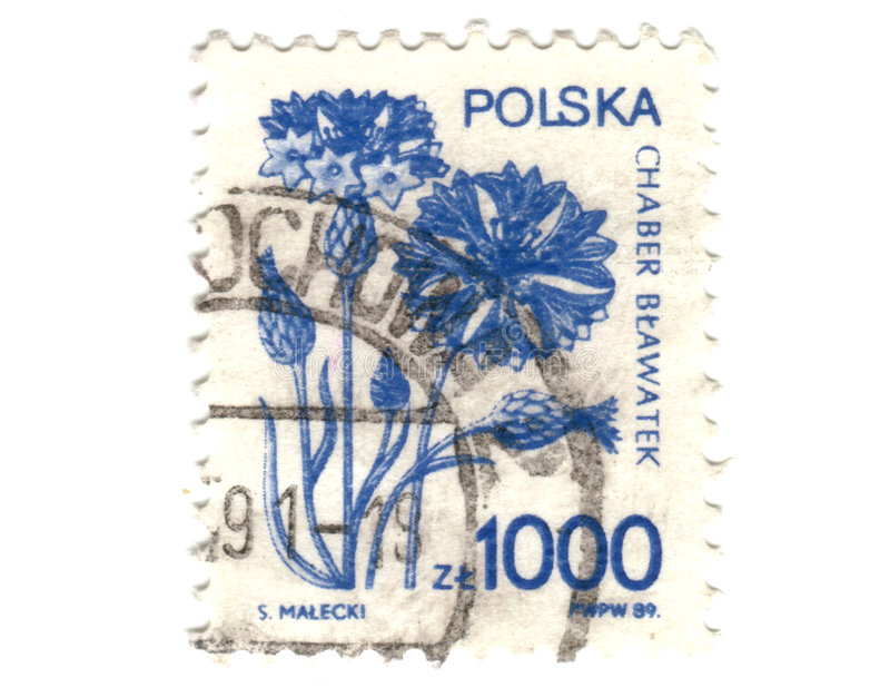 Old polish stamp with flower.  stock images