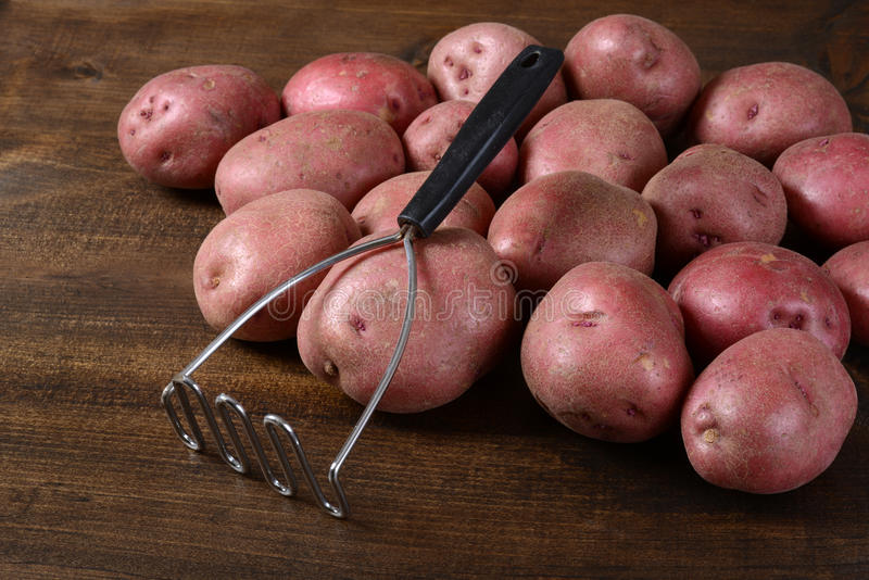 Old potato masher with red potatoes royalty free stock image