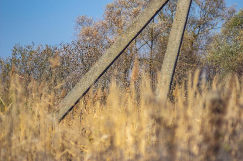 Old power pole in the grass. In autumn royalty free stock photos