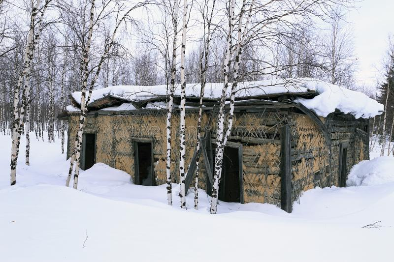 Abandoned Soviet prison in winter in the snow and birch trees in. The old prison barracks of Stalin`s 501-construction sites of the GULAG. The construction of royalty free stock images