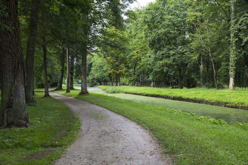 Old public park Schoenbusch  Schönbuch . Town Aschaffenburg, Germany. Old public park Schoenbusch  Schönbuch  -  english landscape garden. Winding road and stock photo