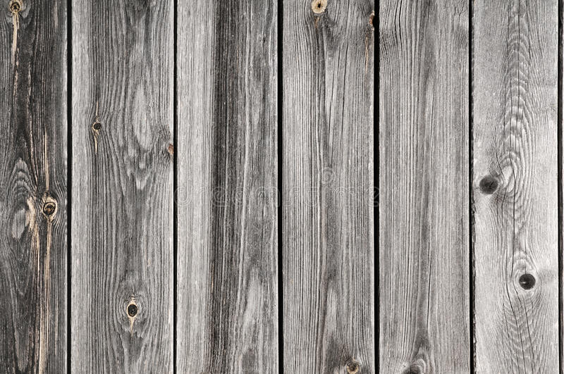 Old ragged fence. Typical wood background stock images