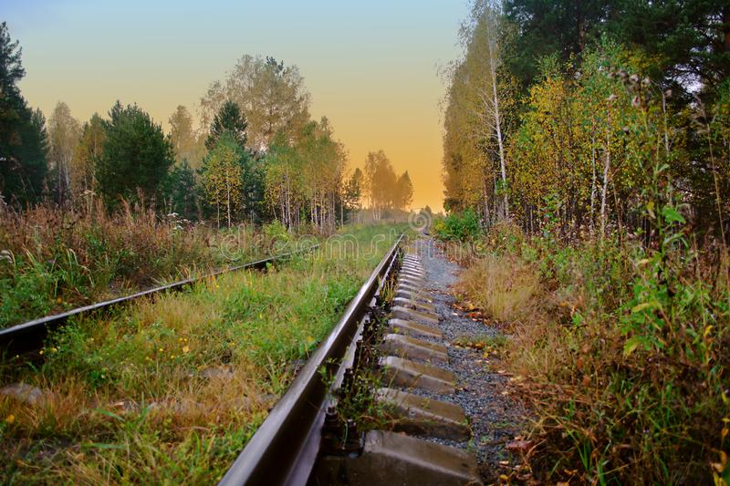 Old railroad passes through a picturesque autumn forest with yellow foliage at sunset lit by the rays of the sun. Old railroad passes through a picturesque royalty free stock photo