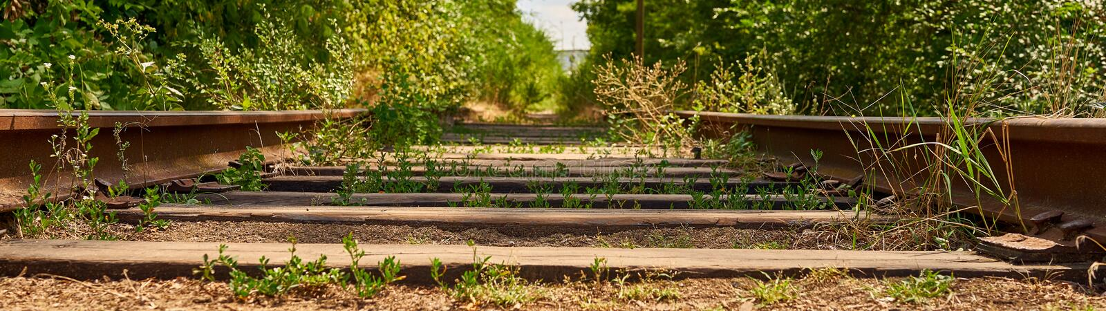 Old railroad tracks in the country stock photography