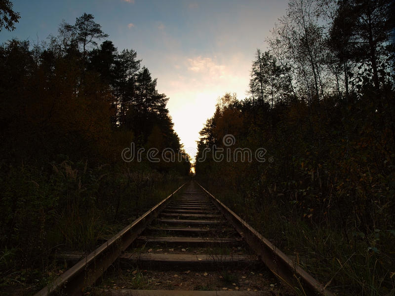 The old railway. In autumn wood royalty free stock images