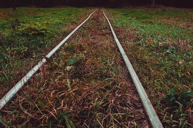 Old railroad tracks royalty free stock image