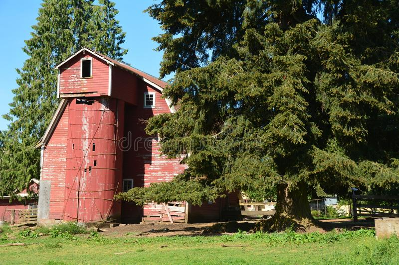 Download Old Red Barn With Silo Near Sandy, Oregon Stock Photo - Image of green, farm: 117970358