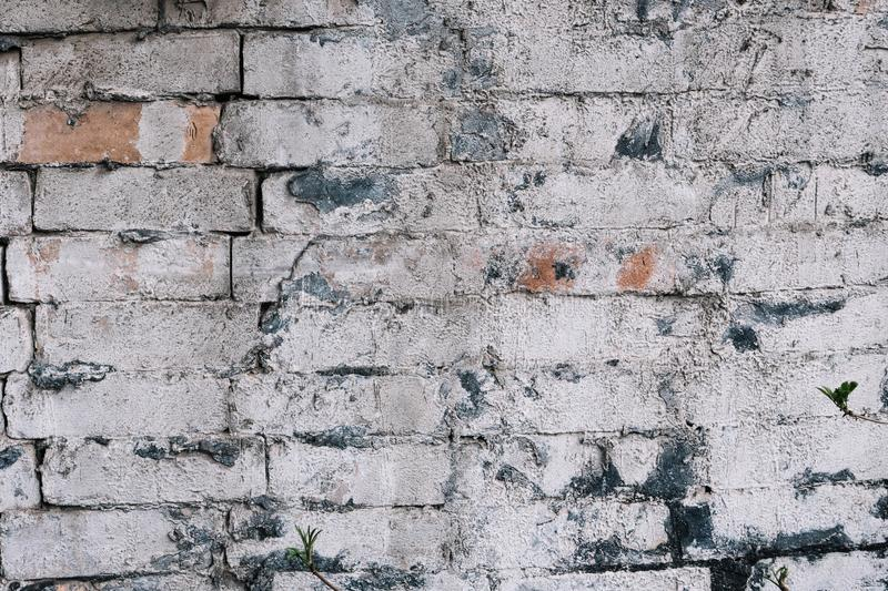 Old red brick wall painted white royalty free stock photos