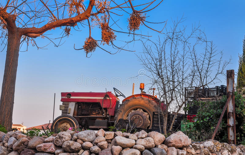 Old red tractor standing under dry tree on the farm. Harvest theme. Horizontal stock photography