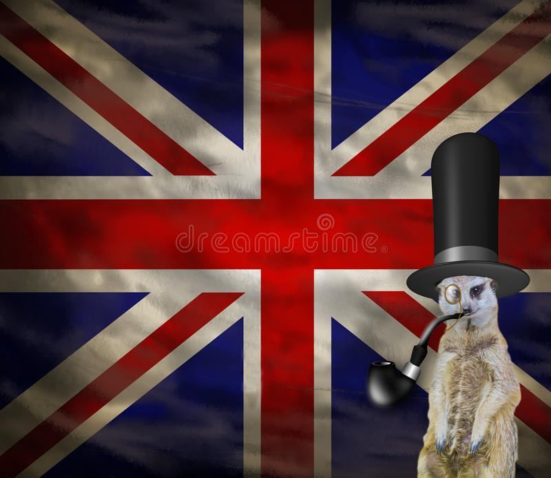 Old retro english concept of a funny elegant suricate wearing a top hat isolated on a background with the flag of england royalty free illustration