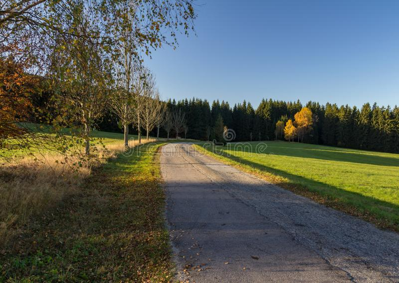 Old road with autumn trees, Czech republic royalty free stock photo