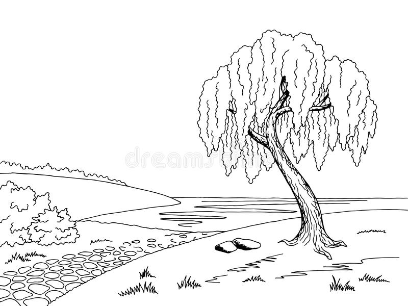 Old road willow tree graphic art black white landscape sketch illustration vector illustration