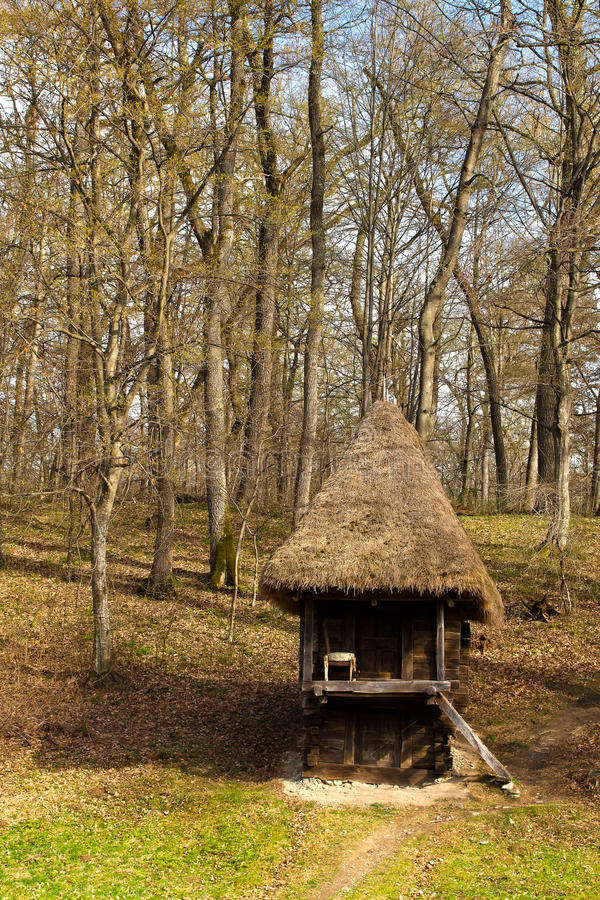 Wooden hut in the forest royalty free stock image