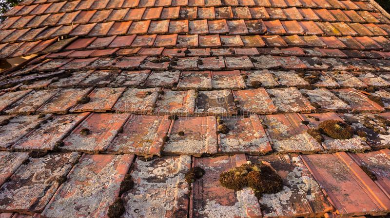 Old roof with moss on it in a village stock images