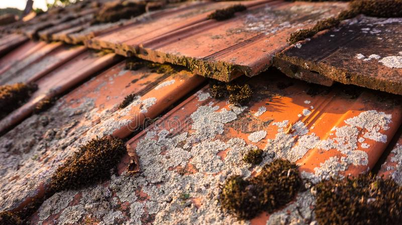 Old roof with moss on it in a village stock photos