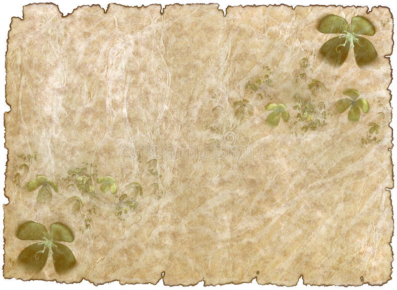 Old rough antique parchment paper with shamrock royalty free illustration