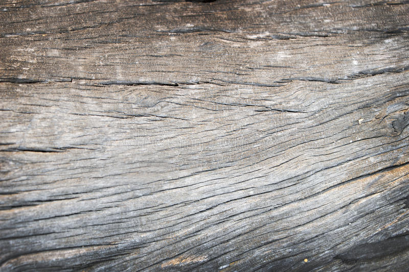 Old rough wood texture. Wooden texture. royalty free stock photos