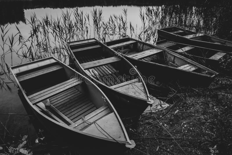 Old row boats at lake. Black and white photography stock photography