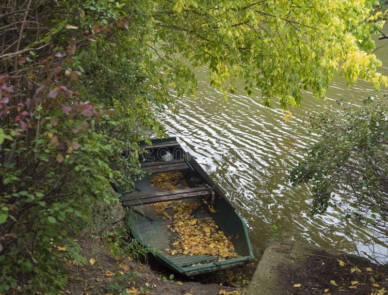 Old rowing boat with fallen leaves on the river Berounka bank in autumn with trees, countryside in golden afternoon stock image