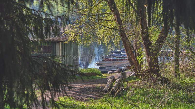 Old rowing boats moored on the shore against the green forest. royalty free stock image