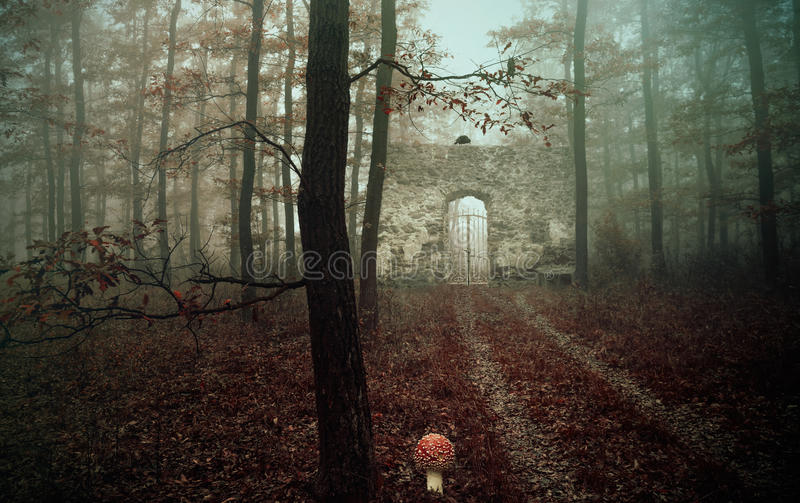 Old ruin in the forest,fantasy photo royalty free stock photos