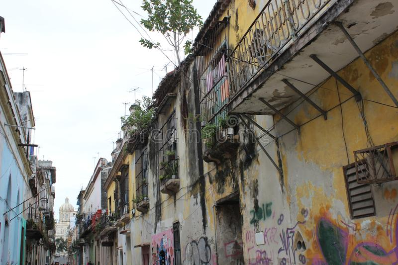 Old ruined balconies and facades on the street in historical center of Havana, Cuba. Trees are growing from the roofs of some buildings royalty free stock image