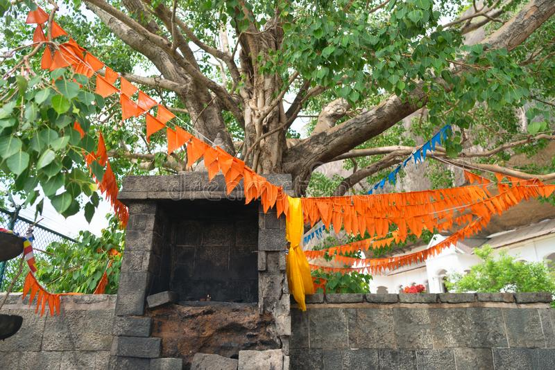 Old ruined shrine near sacred holy tree with flags on branches b. Old ruined shrine near sacred holy tree with flags on branches in the Dambulla Golden cave stock photo